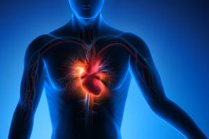 Rare case of Cortication of Aorta